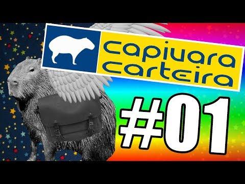 Capivara Carteira #01 – Meteoro