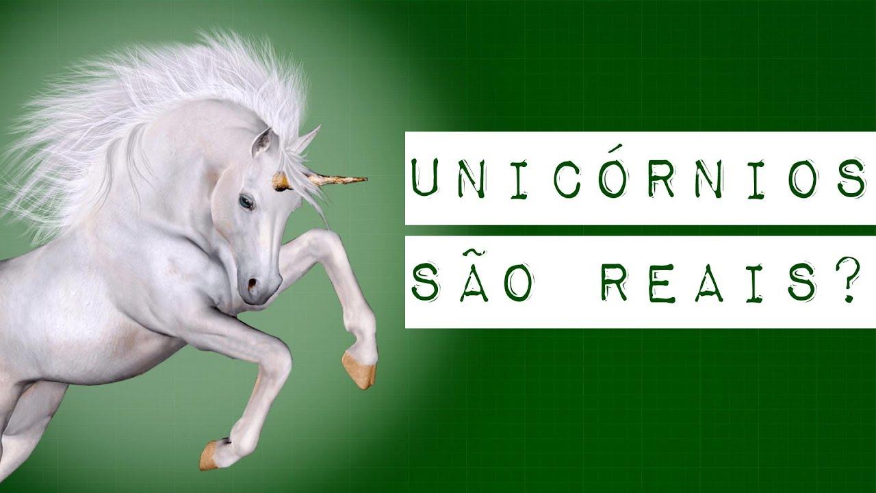 UNICÓRNIOS SÃO REAIS?