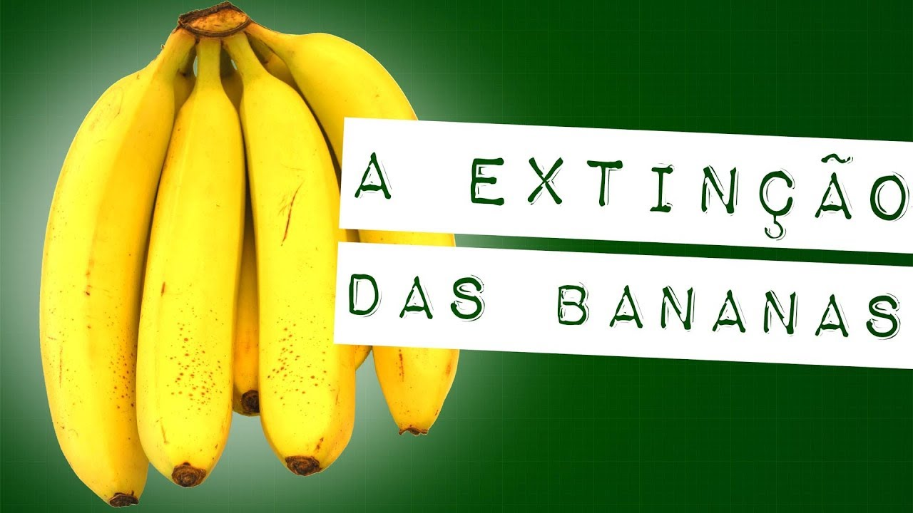 A EXTINÇÃO DAS BANANAS