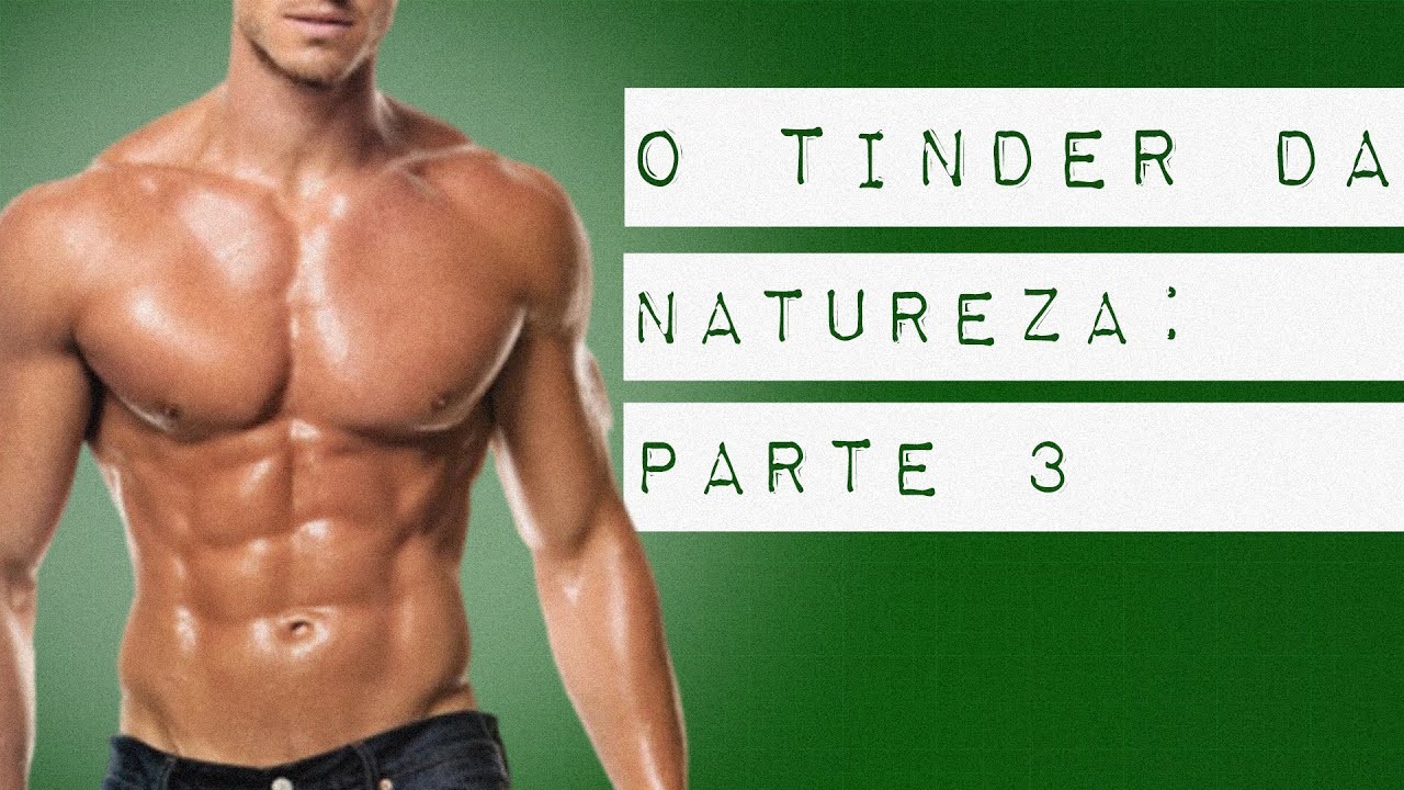 O TINDER DA NATUREZA: PARTE 3